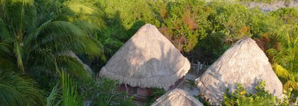 Our Cabins from above